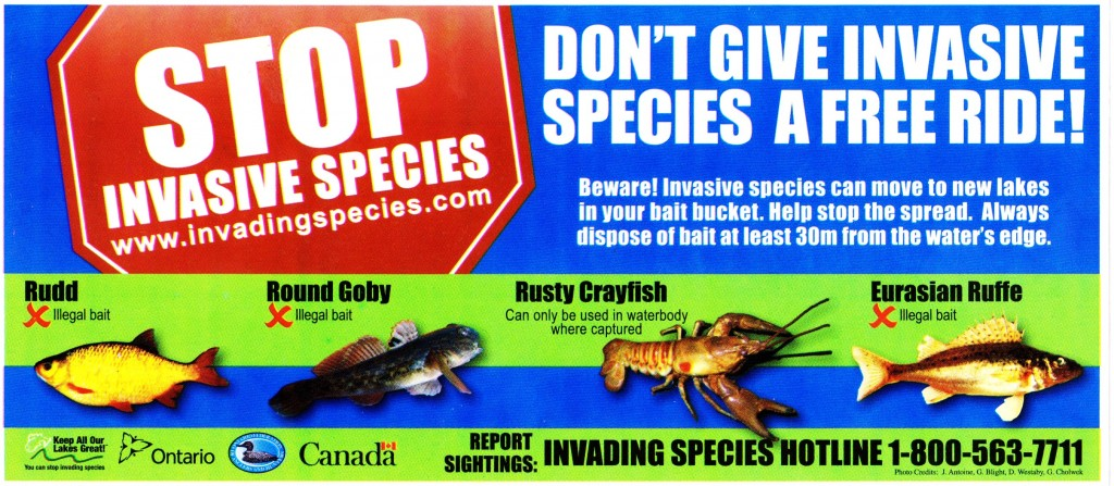 Stop invasive species 001